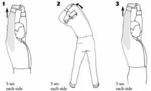 A quick round of stretches like this takes less than a minute and can have a major positive impact on your health.